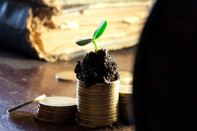 Pay Off Debt & Grow Your Money