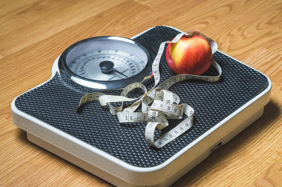 how to lose weight with meal planning