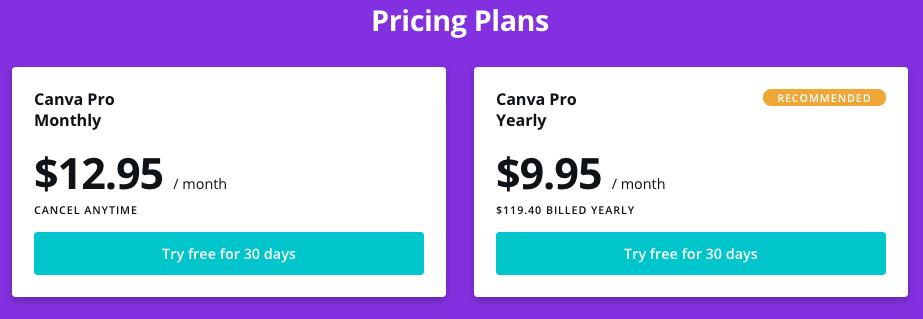Canva Pro Cost